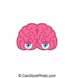 øjne, hjerne, look., hjerner, illustration, isolated., vektor