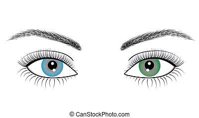 øjne, kvinde, illustration