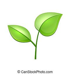 økologi, begreb, blade, vektor, grønne, blanke, ikon