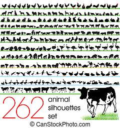 262, silhuetter, sæt, dyr