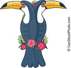 alfabet, toucan, dyr