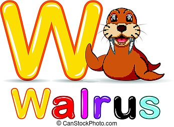 alphabet:, walrus, dyr, w