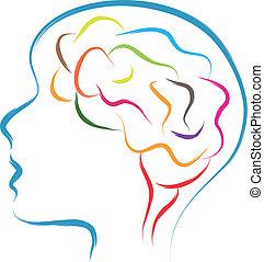 anføreren, hjerne