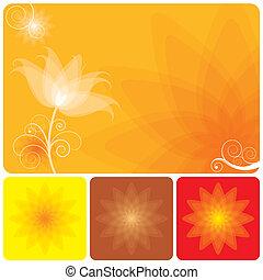 appelsin, blomstrede, baggrund