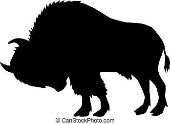 bøffel, udsigter, side
