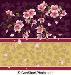 baggrund, kirsebær, -, træ, japansk, sakura, branch
