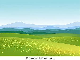 baggrund, natur
