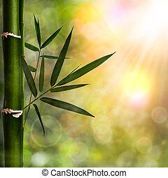 baggrunde, abstrakt, naturlig, bamboo, løvværk