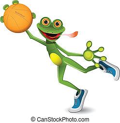 basketball, frø
