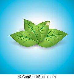 begreb, blade, økologi, grønne, blanke, ikon