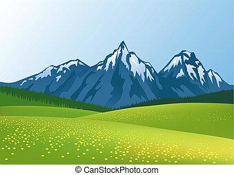 bjerg, baggrund