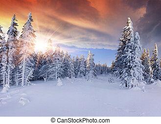 bjerge., dramatiske, smukke, solopgang, himmel, rød, vinter