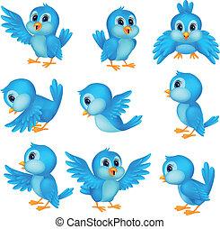 blå, cute, fugl, cartoon