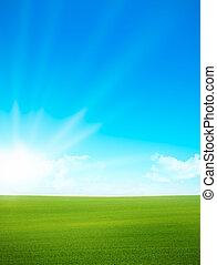 blå himmel, -, grønnes felt, landskab