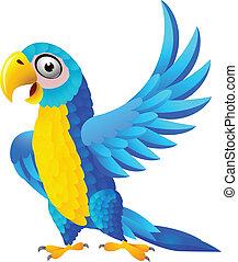 blå, macaw, cartoon