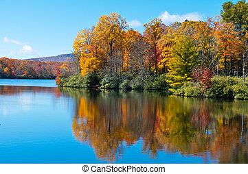 blå ryg, pris, reflekter, overflade, sø, løvværk, fald, parkvej