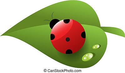 blad, dug, ladybird, grøn rød, plettede