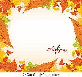 blade, efterår, grænse