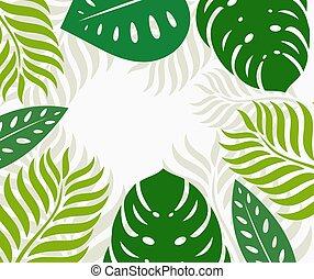 blade, grænse, tropisk, grønne, baggrund.