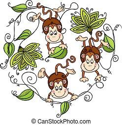 blade, grønne, tre, aber, hængende