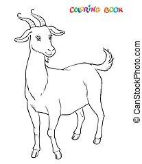 blive, farvet, coloring bog, goat, kids.