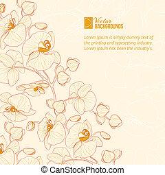 blomst, label., orkidé