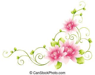 blomst, vinranker