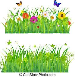 blomster, græs, insekter, grønne