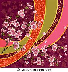 blomstre, mønster, japansk, sakura