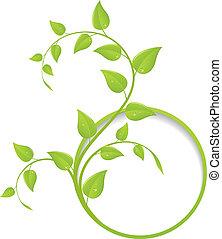 blomstrede, ramme, grønne