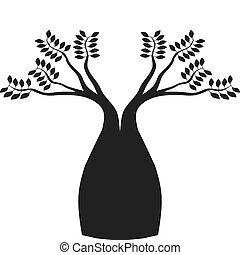 boab, australsk, træ