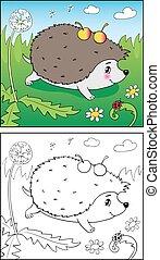 book., hedgehog, coloring, illustration, ladybug.