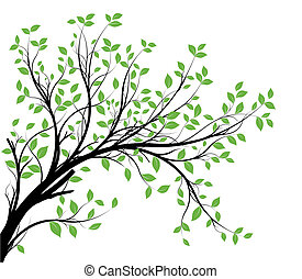 branch, vektor, silhuet, ornamental