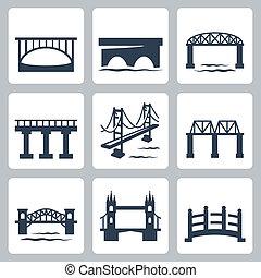 broer, vektor, sæt, isoleret, iconerne