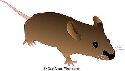 brun, mus, cartoon