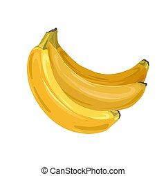 bundtet, vektor, cartoon, bananer, saftige, frugter, hvid, baggrund., tropisk