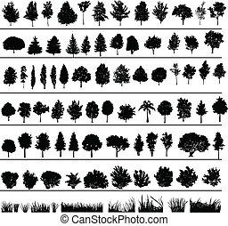 buske, træer, græs