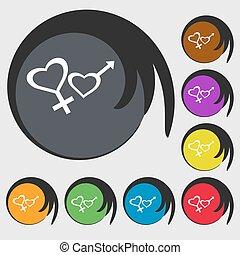 buttons., farvet, tegn, symboler, vektor, otte, kvindelig, icon., mandlig