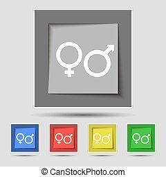 buttons., farvet, tegn, vektor, fem, kvindelig, mandlig, original, ikon
