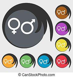 buttons., farvet, tegn., vektor, otte, kvindelig, mandligt symbol, ikon