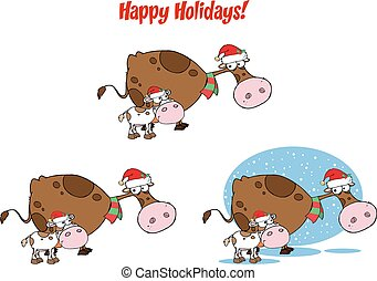 calf., jul, samling, ko