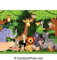 cartoon, dyr