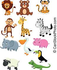 cartoon, samling, dyr