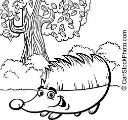 coloring bog, cartoon, hedgehog