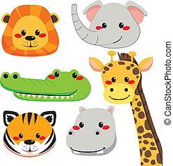 cute, dyr, ansigter