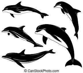 delfiner, sæt, samling, tatovering
