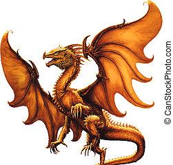 dragon., vektor, middelalderlige