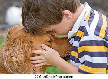 dreng, liden, hund