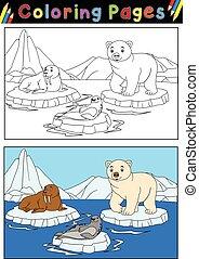 dyr, arktisk, bog, coloring