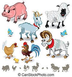 dyr farm, sæt, samling, 01